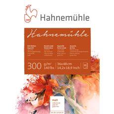 10628147-_Hahnemuehle-10628147-36x48-lpr
