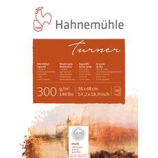10628137_Hahnemuhle-Turner-36x48-lpr