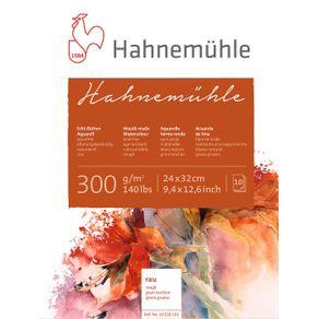 10628161_Hahnemuehle-10628161-24x32