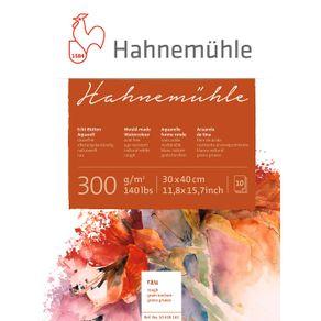 10628162_Hahnemuehle-10628162-30x40-lpr