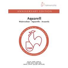 10650071_Anniversary-10650171-30x40-Aquarell