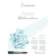 4011367114084_Aquarela_AgaveWatercolour-A4